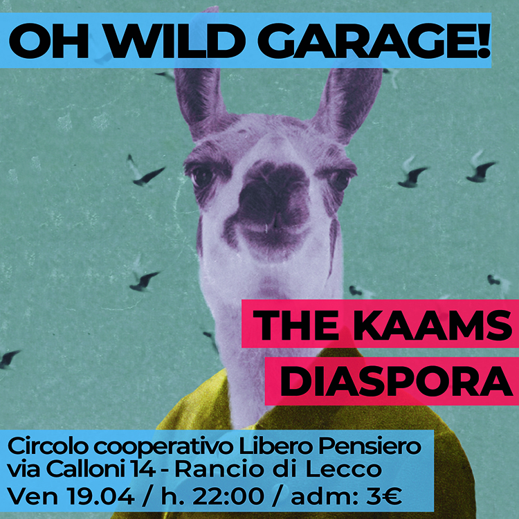 20190419 the kaams diaspora